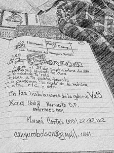 Mexico – contra violencia, el arte, colectivo2