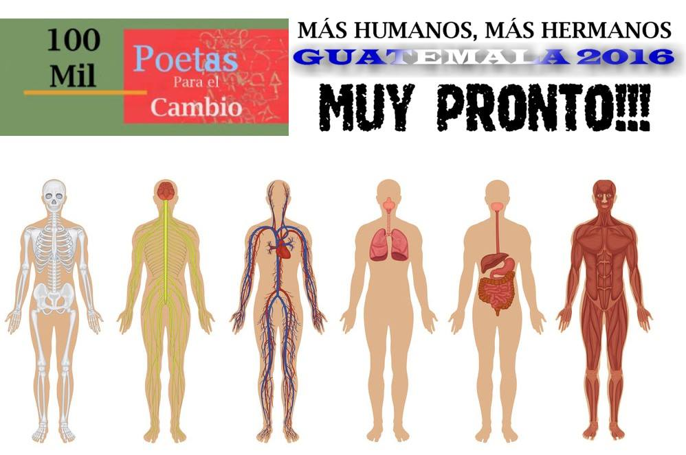 Guatemala_1423323351305221103_o